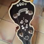 banjo deering calico (7)