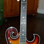 banjo electrique goldtone